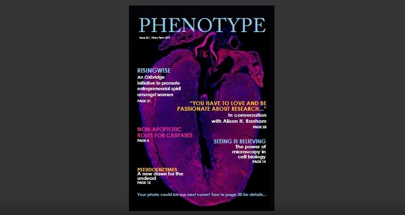 In the Pursuit of a Great Education and Career | Phenotype, Issue 32 HT 2019